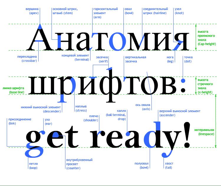 цветов, цвет, цвета, типографика, шрифт, web-дизайн, дизайн, графический дизайн, графика, термины, словарь