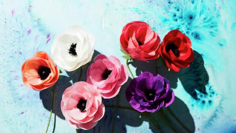 9 цветы
