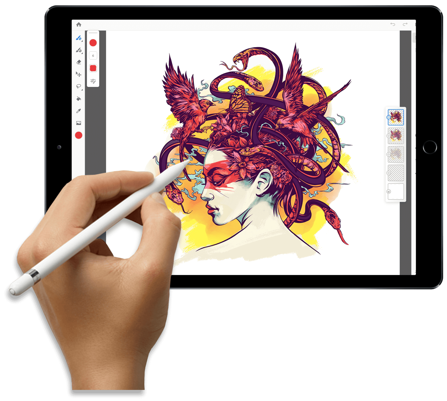 Новые возможности Adobe
