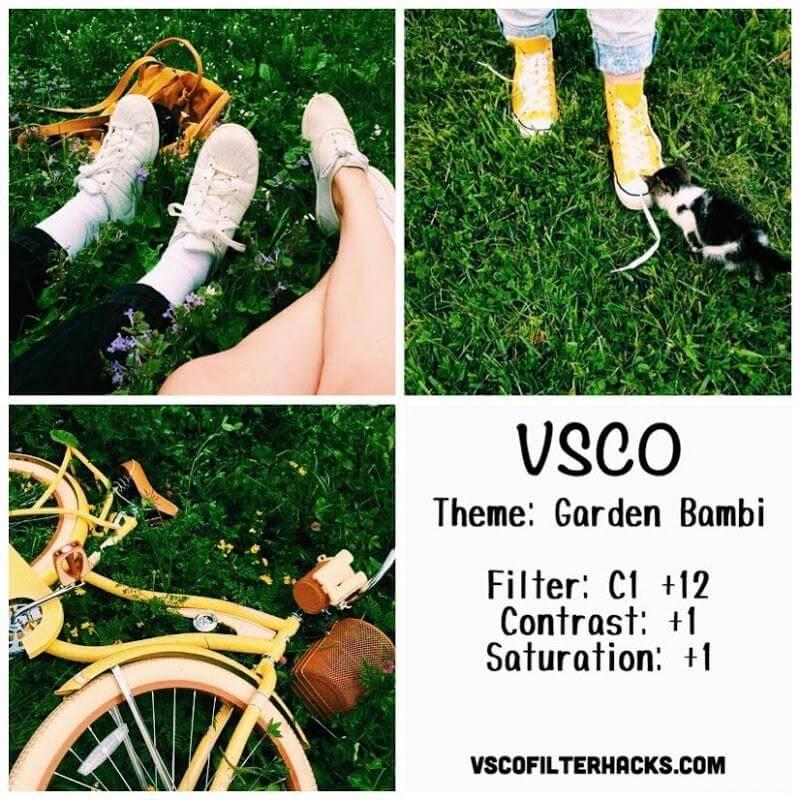 11 Garden Bambi Instagram Feed - VSCO Filter C1