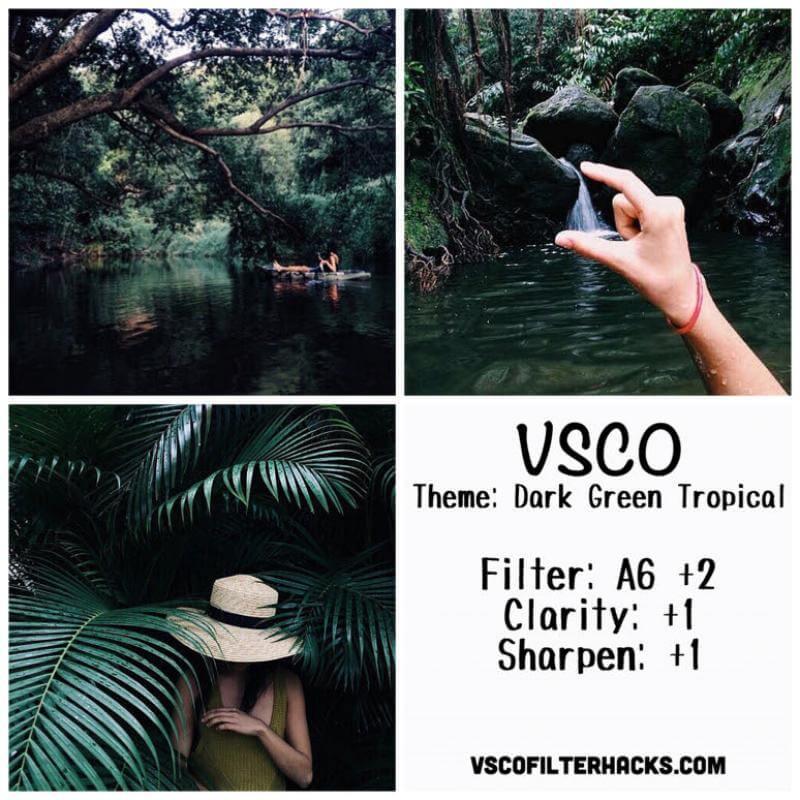 8 Dark Green Tropical Instagram Feed - VSCO Filter A6