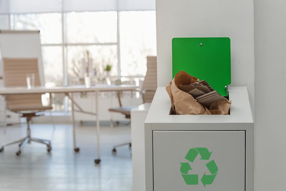 Эко-повестка: зачем бизнесу корпоративные экологические программы